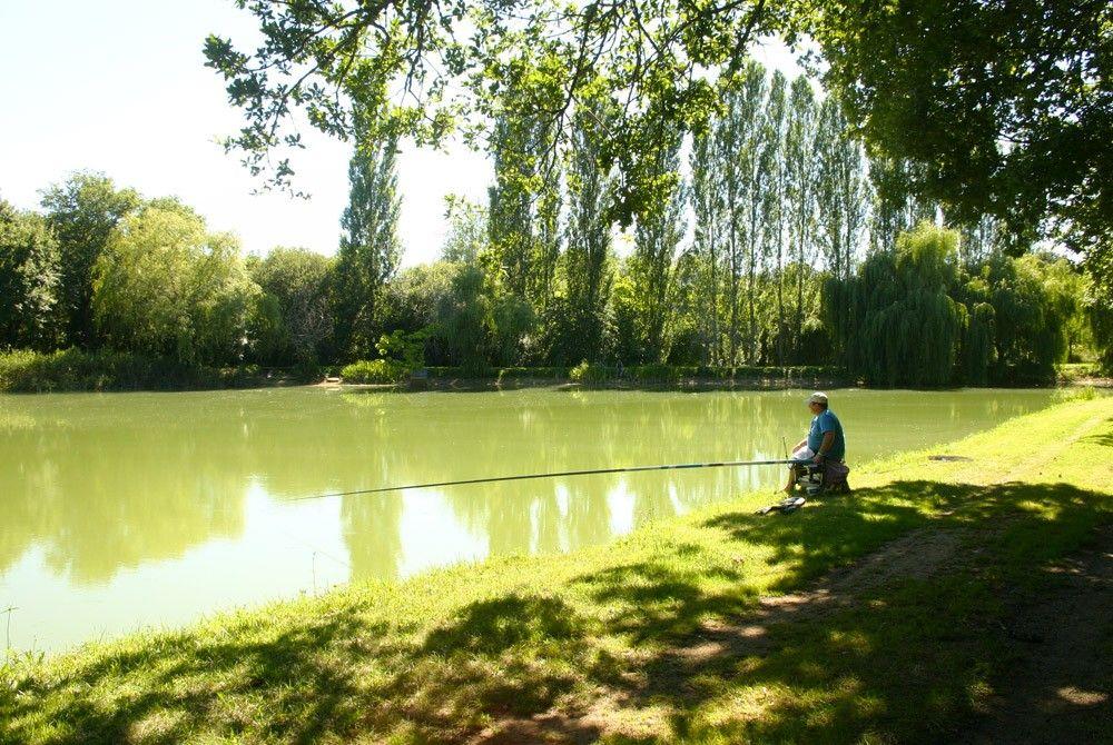 A 20 minutes de Sarlat, pour se ressourcer un étang de pêche mais aussi des locations pour vous accueillir