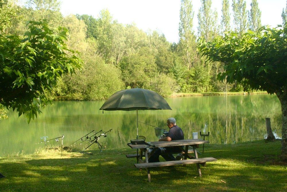 pêche en eau douce dans un étang d'un hectare, amateur de gardons, goujons, blancs
