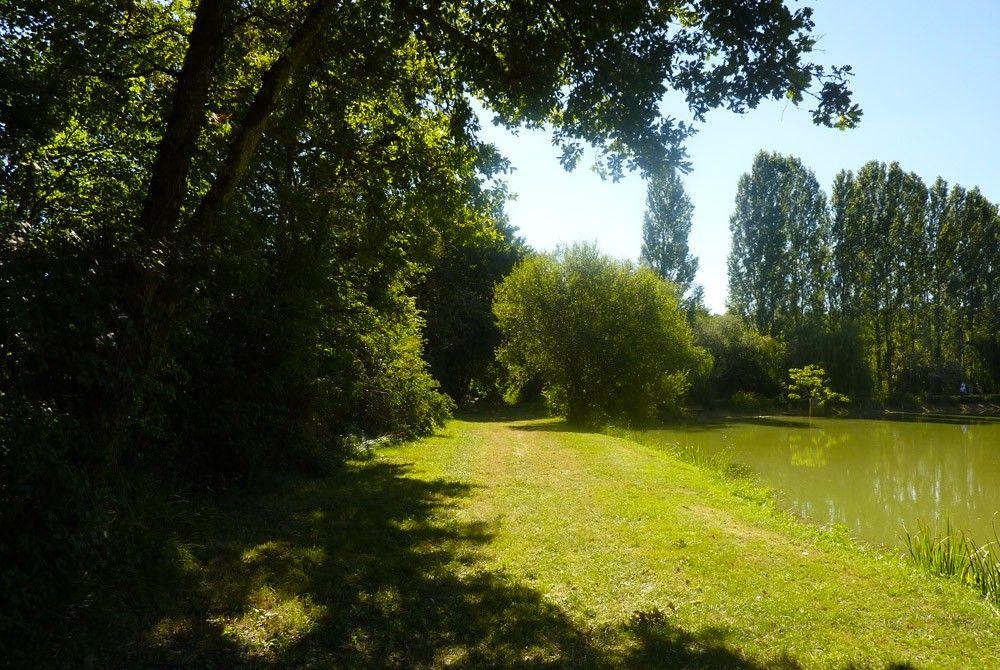 En pleine nature, en Dordogne dans le Périgord, pour les amoureux du calme et de la pêche