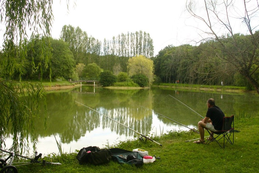 étang pêche Dordogne Périgord