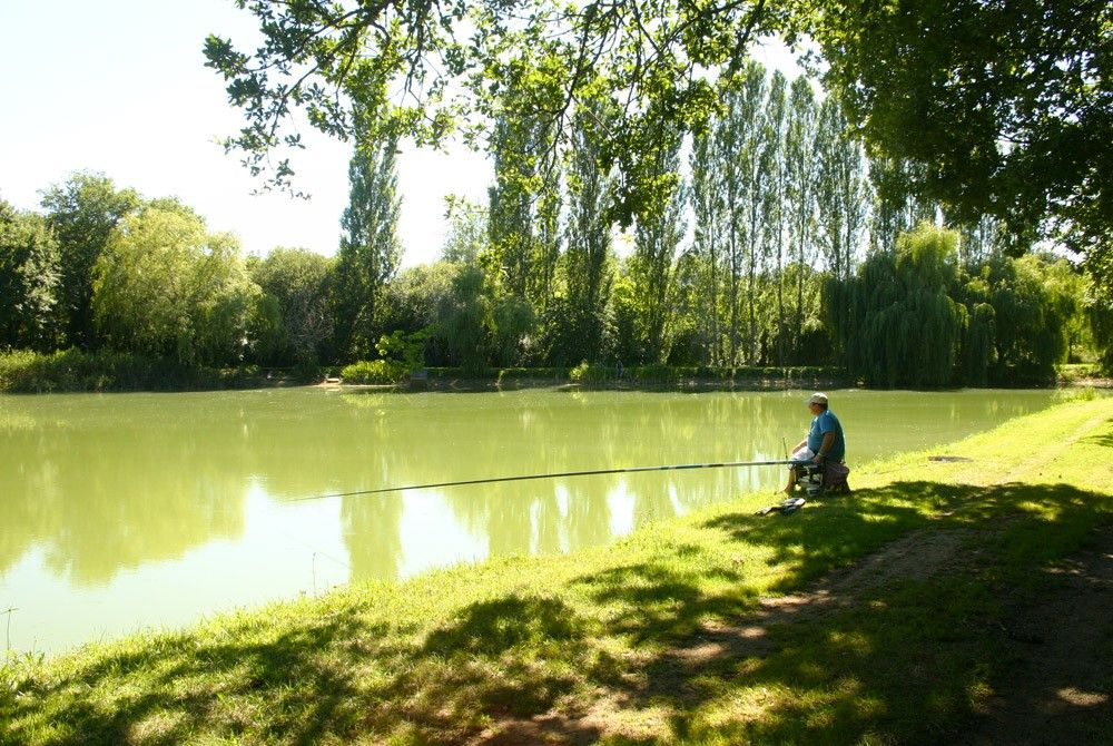 20 minutes from Sarlat, to recharge your batteries, a fishing pond, but also holiday rentals to accommodate you